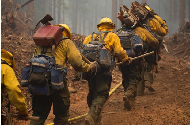 essays on firefighters Firefighting and forestry careers can be extremely gratifying, albeit challenging   while they usually require more work in the forms of possible essays and.