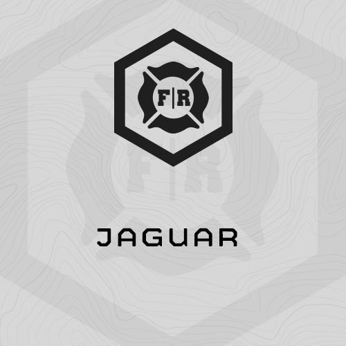 fr-jaguar