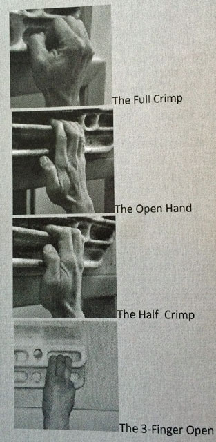 primary-hand-positions
