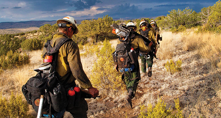 Mti Wildland Firefighter 3 600 3 Endurance Assessment