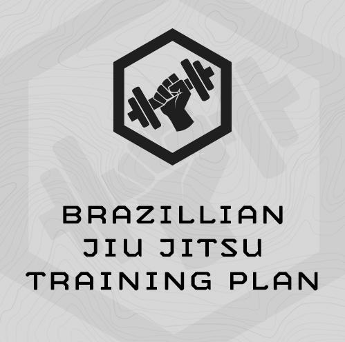 Brazillian Jiu Jitsu (BJJ) Training Plan